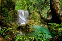LaVaioaga vattenfall, Beusnita nationalpark Royaltyfri Fotografi