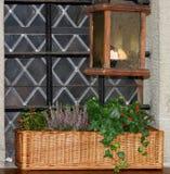 Lavanda, arándano e hierbas frescas en una cesta de mimbre en un viento Fotos de archivo libres de regalías