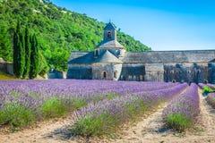 Lavanda delante del abbaye de Senanque en Provence Imagen de archivo libre de regalías