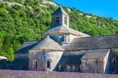 Lavanda delante del abbaye de Senanque en Provence Fotografía de archivo
