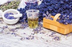 Lavanda della pianta medicinale, olio di lavanda Immagini Stock