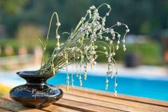 Lavanda en un florero Imágenes de archivo libres de regalías