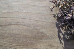 Lavanda en un fondo de madera Fotografía de archivo