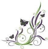 Lavanda, flores, mariposas Foto de archivo