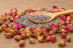 Lavanda secca e tè rosa del fiore Fotografia Stock Libera da Diritti