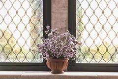 Lavande par la fenêtre photos stock