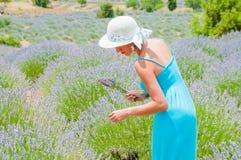 单独走在lavander领域的美丽的妇女 免版税库存图片