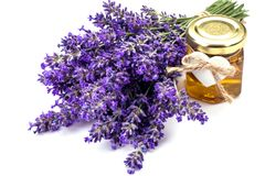 Lavander with aromatic oil Royalty Free Stock Photo