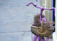 Lavander basket on bicycle Royalty Free Stock Photos
