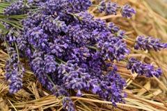 Lavander-Blumenstrauß Stockbild