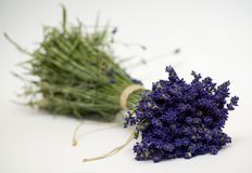 Lavander herb. Herb lavender flowers arranged and tied Stock Photo