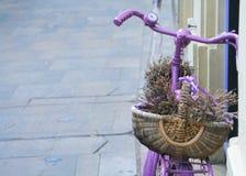 Lavander korg på cykeln Royaltyfria Foton