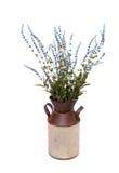Lavander in metal vase Stock Images