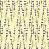 Lavander seamless pattern on yellow background Stock Photography