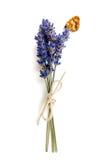 Lavander y mariposa Fotos de archivo