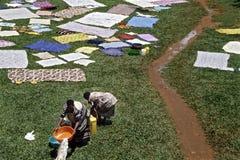Lavanderia all'aperto nell'ospedale di Mulago, Kampala Immagini Stock
