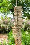 A lavanderia de madeira grampeia a suspensão verticalmente em uma corda Fotografia de Stock
