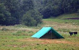 Lavanderia di secchezza da asciugarsi vicino alla tenda in un campo dell'esploratore Fotografia Stock