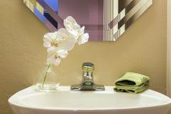 Lavandino del bagno con i fiori Fotografie Stock Libere da Diritti