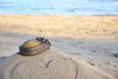 Lavandino sulla sabbia con amore Fotografie Stock