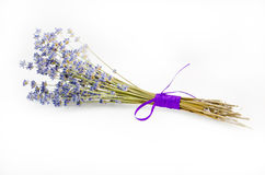 Lavender. A bunch of lavender tied with a purple ribbon on a white background Royalty Free Stock Photography