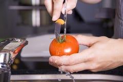 Lavar un tomate Fotos de archivo