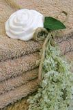 Lavare-fiorito Fotografia Stock Libera da Diritti