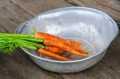 Lavare il mazzo di carota Fotografie Stock