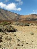 lavas långt Arkivbilder