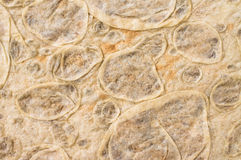 Lavash for background Stock Photos