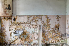 Lavatory in abandoned facrory Stock Photo