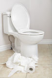 Lavatory pan and toilet paper Stock Photography