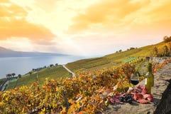 Lavaux地区,瑞士 库存图片