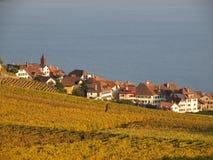 Lavaux的村庄 免版税库存图片
