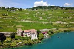 Lavaux, die Schweiz Lizenzfreies Stockbild