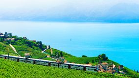 Lavaux, die Schweiz - 30. August 2016: Zug an den Weinberg-Terrassen in Lavaux in Genfersee und Schweizer Alpen, Lavaux-Oronbezir lizenzfreie stockfotografie