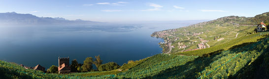 Lavaux and Geneva Lake (Lac Léman) Royalty Free Stock Photography