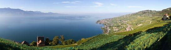 Lavaux och Geneva Lake (gummilacka Léman) Royaltyfri Fotografi