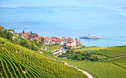 Lavaux region Royalty Free Stock Photo