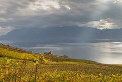 Lavaux-Region auf Herbst 9 stockfotografie