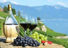 Lavaux-Region, die Schweiz Lizenzfreie Stockfotos
