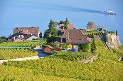 Lavaux Region, die Schweiz Stockfoto