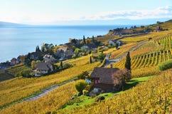 Lavaux region, Switzerland Stock Photos