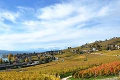 Lavaux region, Switzerland Stock Photography