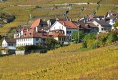 Lavaux region, Switzerland Royalty Free Stock Images