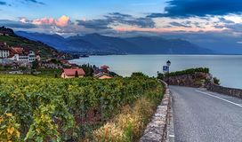 Lavaux region, Vaud, HDR Royalty Free Stock Photo