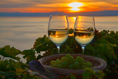 Lavaux region Royalty Free Stock Images