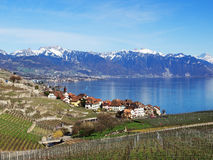 Lavaux in Spring at Rivaz with Lake Geneva Royalty Free Stock Photos
