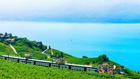Lavaux, Suiza - 30 de agosto de 2016: Tren en las terrazas del viñedo en Lavaux en el lago Lemán y las montañas suizas, distrito  fotografía de archivo libre de regalías