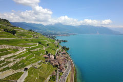 Lavaux, Svizzera Fotografie Stock
